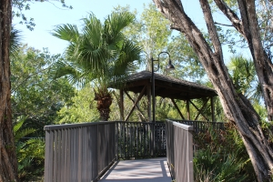 wooden walkway and gazebo